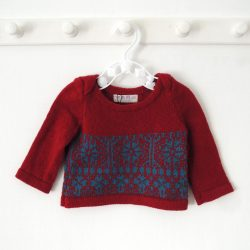 Crimson Petrol Jumper